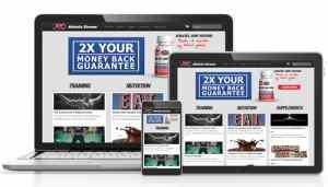 Веб-дизайн - разработка сайтов